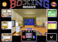 Boxing Manager Professional Edition screenshot